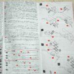 ドゥカティ 749 999 1098 ブレンボ ブレーキスイッチ 説明書